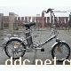 天宇TDP082Z都市情人型电动自行车