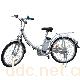 天宇都市丽人TDH085Z型锂电池电动车