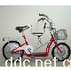 天际TDP02-2Z亲子车(2)型锂电电动车