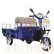 速豹SB-010C平板车型(车箱分体式)电动三轮车