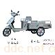 LY-6绿佳差速金冠电动三轮车