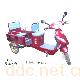 880*750LY-14绿佳红色折叠电动三轮车