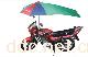 江西臣乐电动车遮阳伞