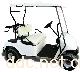 四川伊莱维克ILAVOC-GD02C电动高尔夫球车