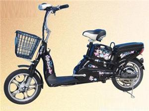 常州鼓浪奇350W金蝴蝶电动自行车