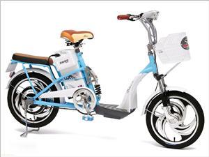 天津美邦TDP035Z南方周末电动自行车