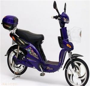 美邦赛虎二代简易电动自行车